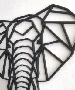 Detalle cabeza elefante decoración pared